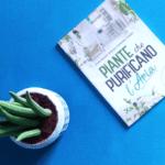 Heroplant - Piante che purificano l'aria