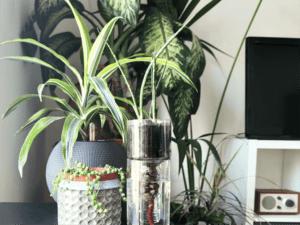 Heroplants vasi autoirriganti